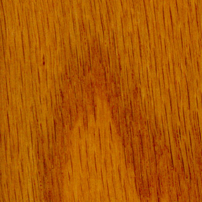 Harris tarkett amherst beveled 5 oak butterscotch hardwood for Harris tarkett flooring